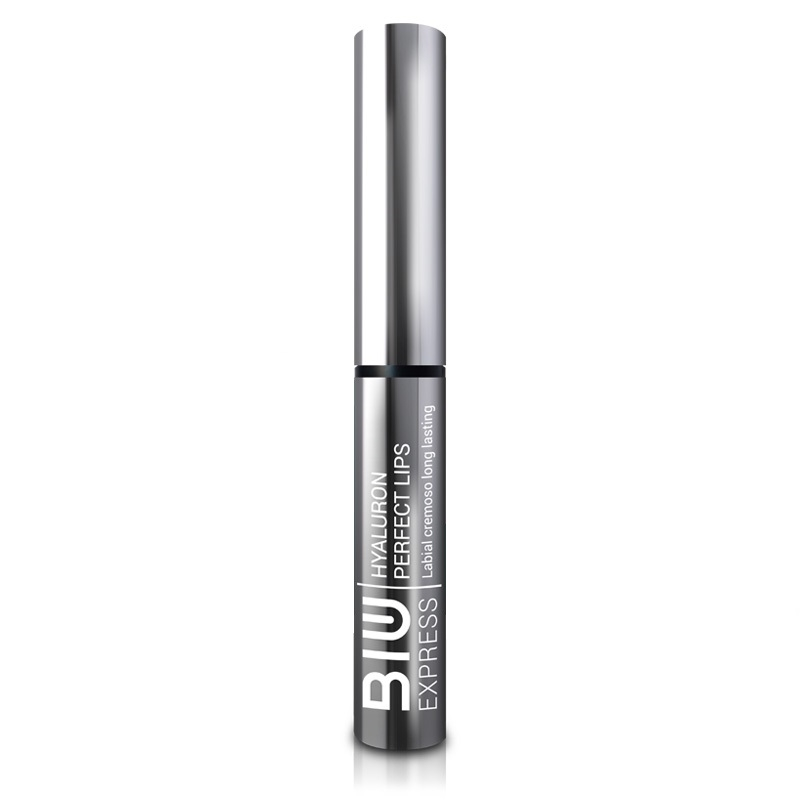 BIU  LABIAL HYALU PERF LIPS 10 DAKOTA ENV X 60ML